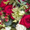 jane-luce-bouquets-bulle-d-amour-3