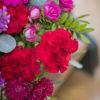 jane-luce-bouquets-elisa-3