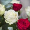 jane-luce-bouquets-heloise-et-abelard-2