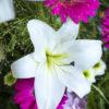 jane-luce-bouquets-l-harmonie-2