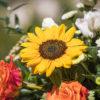 jane-luce-bouquets-l-isabelle-2