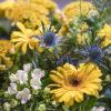 jane-luce-bouquets-l-ursine-3