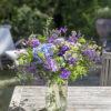 jane-luce-bouquets-la-licorne-1