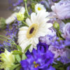 jane-luce-bouquets-la-traversee-3