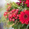 jane-luce-bouquets-mercure-et-l-amour-3