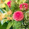 jane-luce-bouquets-deuil-coussin-hauteur-2