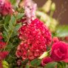 jane-luce-bouquets-deuil-coussin-rond-champetre-2