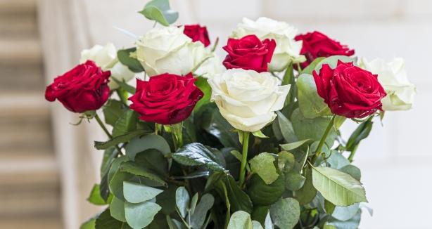 jane-luce-presentation-specialiste-des-roses