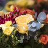 jane-luce-bouquet-doreedoree-2